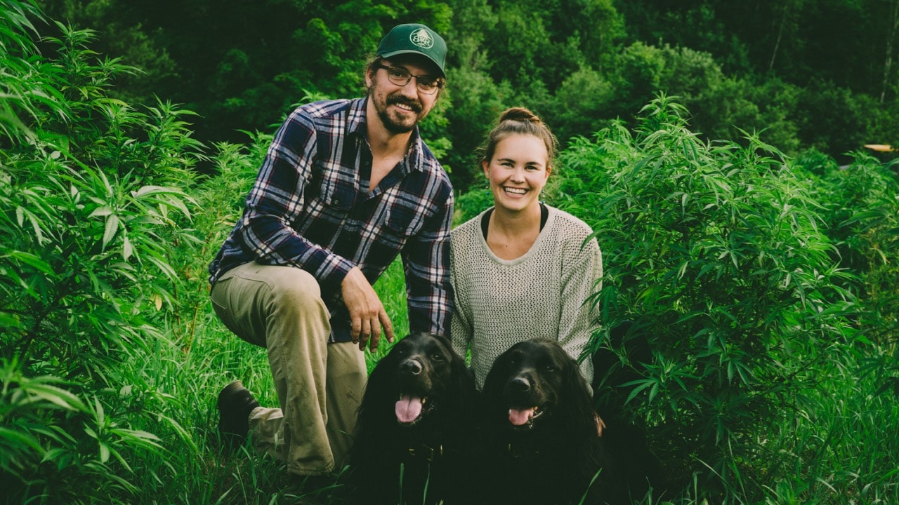 Erin and Colin posing with their dogs in a hemp field