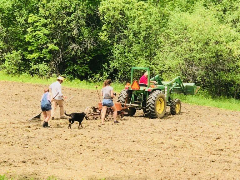 People tilling a hemp field
