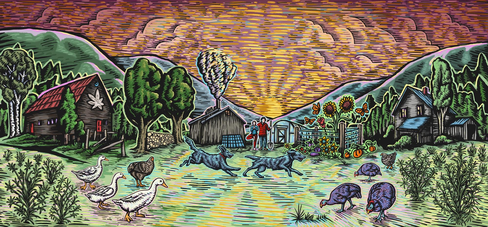 Illustration of Vermont Farmacy organic hemp farm